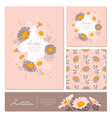 flowers cards set chamomile background daisy vector image