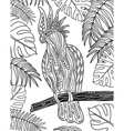 Graphic cockatoo parrot on a branch vector image vector image