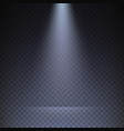 rays light on transparent checkered background vector image