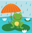 frog hide from rain under umbrella vector image vector image