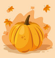 pumpkin vegetable design vector image