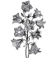 Bell flower vector image vector image
