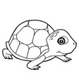cartoon cute turtle coloring page vector image vector image