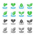 leaf and ripple icon set vector image
