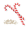merry christmas lettering cane sugar candy vector image