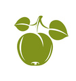 Single green simple apple with green leaves ripe vector image vector image
