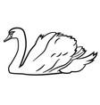 swimming swan vector image