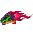 ankylosaurus with flame vector image