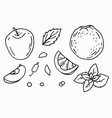 christmas fruits and spices vector image vector image
