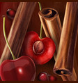 cinnamon and cherry vector image vector image
