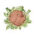green leaf tree wreath banner watercolor vector image vector image