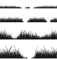 set black grass silhouette vector image