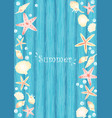 starfish seashell and pearl on blue wood frame vector image