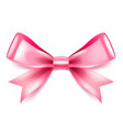 pink bow isolated on white vector image