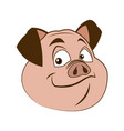 cute pig funny piggy standing and smiling vector image vector image