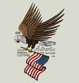 native eagle american wild bird old label and vector image