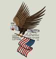 native eagle american wild bird old label vector image vector image