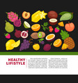 organic fruits poster of healthy food and farm vector image vector image