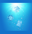 realistic transparent ice cubes in blue water vector image vector image