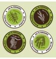 Set of Natural Organic Product badges vector image vector image