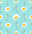 daisy seamless pattern chamomile background vector image vector image