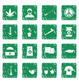 rastafarian icons set grunge vector image vector image