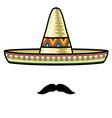 Sombrero2 resize vector image vector image