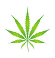 color cannabis marijuana vector image vector image