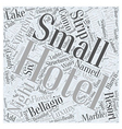 Expensive Hotels on the Strip Word Cloud Concept vector image vector image