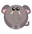 fat elephant on white background vector image vector image
