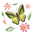 green butterfly and flowers vector image