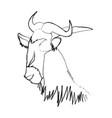 head wildebeest african wildlife animal vector image vector image