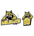 jumping wildcat vector image vector image