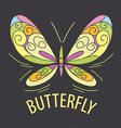 logo color of the butterfly patterns vector image vector image