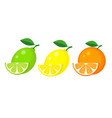 set of lemon lime and orange with slices and vector image