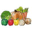 types of fresh vegetables still life vector image