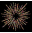 abstract circle firework on black vector image