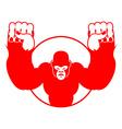 Angry gorilla Aggressive big monkey irritated wild vector image vector image