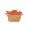 basket of apples single icon cartoon style vector image