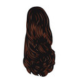 brown long back back hairstyle vector image