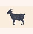 goat vintage logo retro print poster for vector image vector image