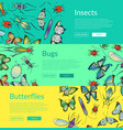 hand drawn insects of set colored vector image