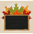 Maple leaves and black chalkboard vector image vector image