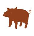 pig farm animal vector image