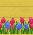 spring banner with blooming tulip vector image vector image