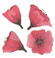 set of hand drawn flowers vector image