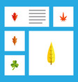 flat icon maple set of linden aspen frond and vector image vector image