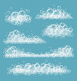 foaming bubbles soapy transparent circles and vector image vector image
