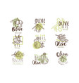 organic olive product set for label design vector image vector image