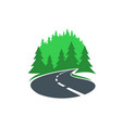 road in forest icon highway or path way asphalt vector image vector image